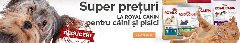 Royal Canin pentru pisici si caini