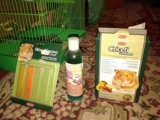 Hamster alb